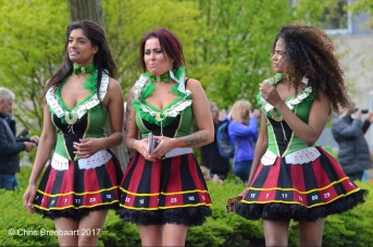 The Netherlands, Voorhout - April 2017