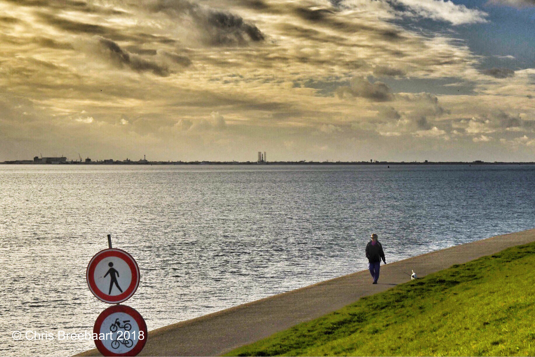 Image Result For Dog Walking Slow